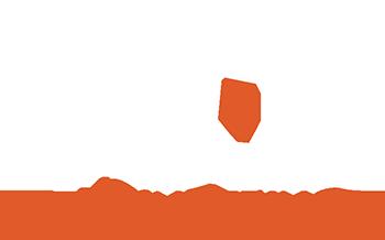 Vehicle Engineering & Design Logo